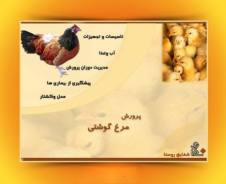 مولتی مدیا آموزش پرورش مرغ گوشتی