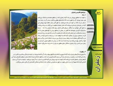 مولتی مدیای آموزش کاشت و پرورش زعفران