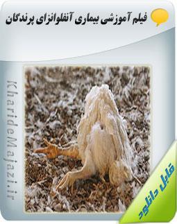 فیلم آموزشی بیماری آنفلوانزای پرندگان