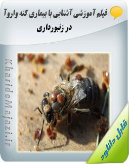 فیلم آموزشی آشنایی با بیماری کنه واروآ در زنبور داری