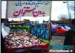 راهنمای خرید ماهی