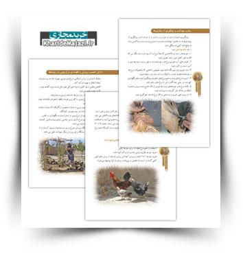 کتاب الکترونیکی پرورش مرغ بومی