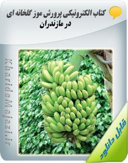 کتاب الکترونیکی پرورش موز گلخانه ای در مازندران