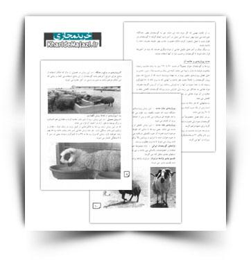 کتاب الکترونیکی اصول پرواربندی گوسفند