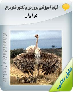 فیلم آموزشی پرورش و تکثیر شترمرغ در ایران