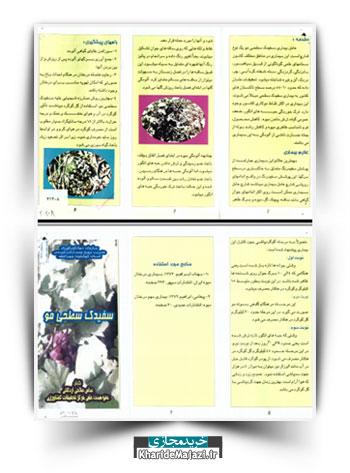 مجموعه نشریات آموزشی در زمینه کاشت و پرورش انگور