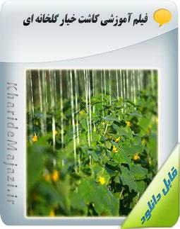 فیلم آموزشی کاشت خیار گلخانه ای