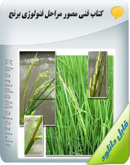 کتاب فنی مصور مراحل فنولوژی برنج