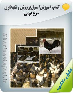 کتاب آموزش اصول پرورش و نگهداری مرغ بومی