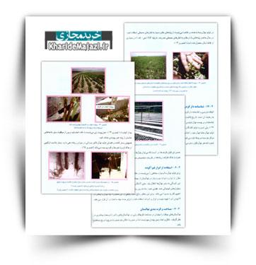 کتاب الکترونیکی استاندارد سازی نهالستان ها