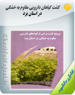کشت گیاهان دارویی مقاوم به خشکی در استان یزد
