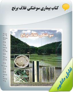 کتاب بیماری سوختگی غلاف برنج