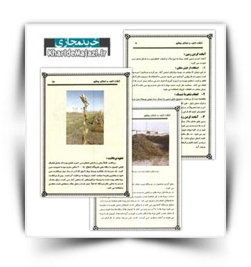 کتاب آموزشی کاشت کنجد در استان بوشهر