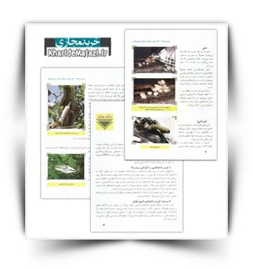 کتاب آموزشی کرم خراط ( آفت مهم درختان مثمر و غیر مثمر )