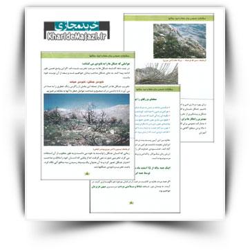 کتاب آموزشی مشارکت عمومی برای حفظ احیای جنگلها
