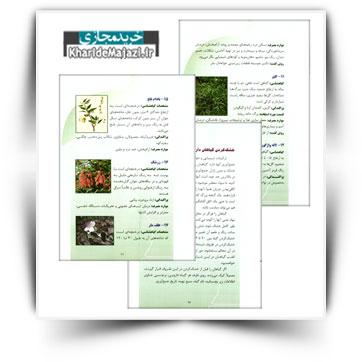 کتاب آموزشی آشنایی با گیاهان دارویی استان لرستان