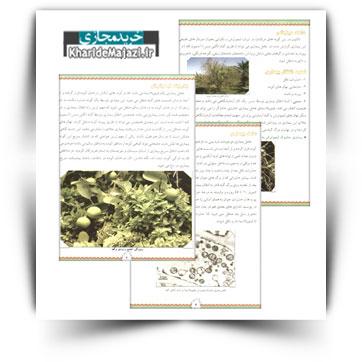 کتاب آموزشی بیماری جاروک لیمو ترش