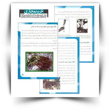 کتاب آموزشی اصول تولید نهال گواهی شده زیتون در استان خوزستان