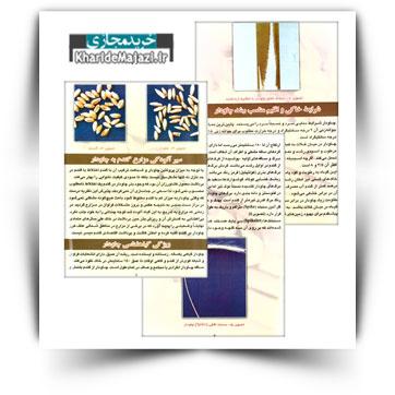 کتاب آموزشی شناسایی و کنترل چاودار در مزارع گندم استان فارس