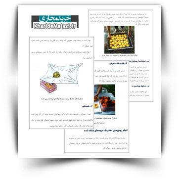 کتاب آموزشی راه های خشک کردن میوه ها