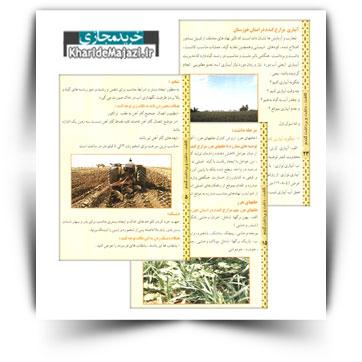 کتاب آموزشی کاشت، داشت و برداشت گندم در خوزستان