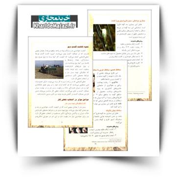 کتاب آموزشی مدیریت زراعت گندم دیم در استان لرستان