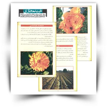کتاب آموزشی کشت و پرورش گیاه دارویی همیشه بهار در خوزستان