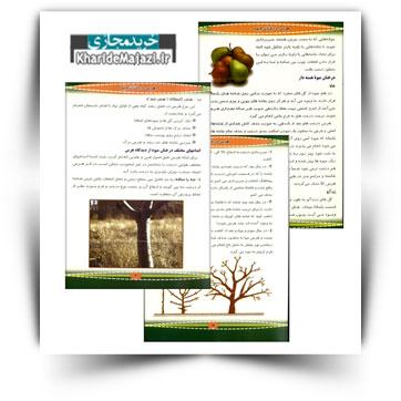 کتاب آموزشی هرس درختان میوه