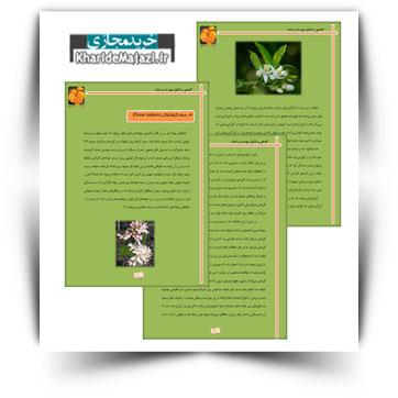 کتاب آموزشی گل دهی و تشکیل میوه در مرکبات