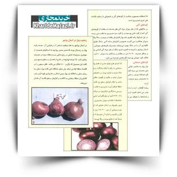 کتاب آموزشی کشت پیاز در استان بوشهر