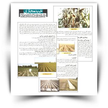 کتاب آموزشی کاشت، داشت و برداشت ذرت در استان خوزستان