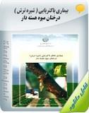 کتاب آموزشی بیماری باکتریایی ( شیره ترش ) درختان میوه هسته دار Image