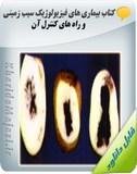 کتاب بیماری های فیزیولوژیک سیب زمینی و راه های کنترل آن Image