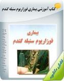 کتاب آموزشی بیماری فوزاریوم سنبله گندم Image
