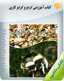 کتاب آموزشی ضرورت مصرف بهینه کود های شیمیایی برای افزایش عملکرد درخت گردو Image