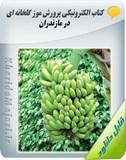 کتاب الکترونیکی پرورش موز گلخانه ای در مازندران Image