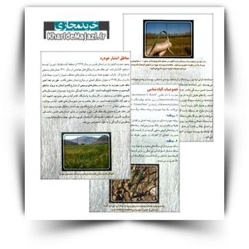 کتاب آموزشی مدیریت کنترل علف هرز جو دره در مزارع گندم