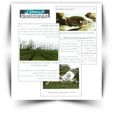 کتاب آموزشی اهمیت به زراعی در باغ های چای