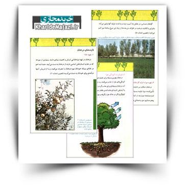 کتاب آموزشی درختگاری و فایده های آن