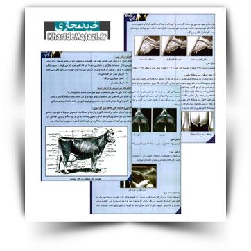 کتاب آموزشی تیپ در گاو های شیری